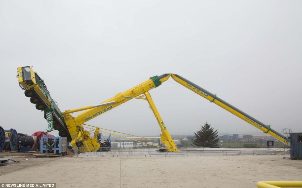 Crane Pictures article-0-1d96987b00000578-621_968x604 ⋆ crane network news